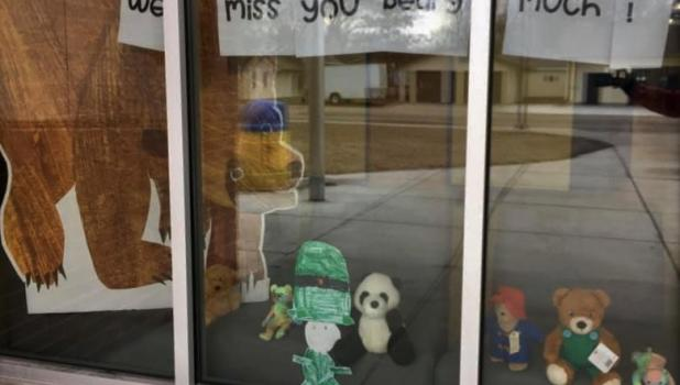 """Teachers at the Minneota Public School are showing how much they miss their students. All you have to do is go on a """"Bear Hunt"""" to see the evidence. This has become a popular family activity throughout the country."""