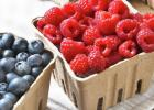 Minnesota summer raspberry and blueberry growers report fields full of blossoms and expect to open for pick-your-own and pre-picked berries the first two weeks of July.